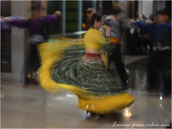 Spectacol dansant la Tulcea